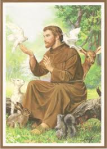 st francis of assisi 0