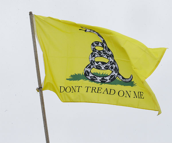 Don't Tread on Me (flag)